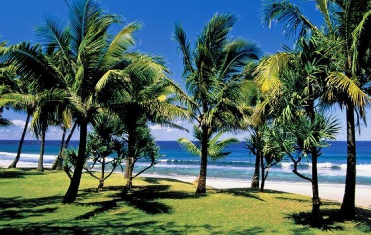 Elodie fait au moins un grand voyage avec sa famille recomposée de 4 enfants par an. Cette année, elle a décidé de partir en famille mais seulement avec son petit dernier (Clément 6 ans) pour une semaine de vacances en Guadeloupe. Un moment privilégié avec un des enfants, c'est une bonne idée et ça fait du bien à tout le monde ! Cette île tropicale des Antilles est d'ailleurs parfaite avec un petit de cet âge : des plages de sable, des randonnées faciles dans la forêt qui se terminent par…