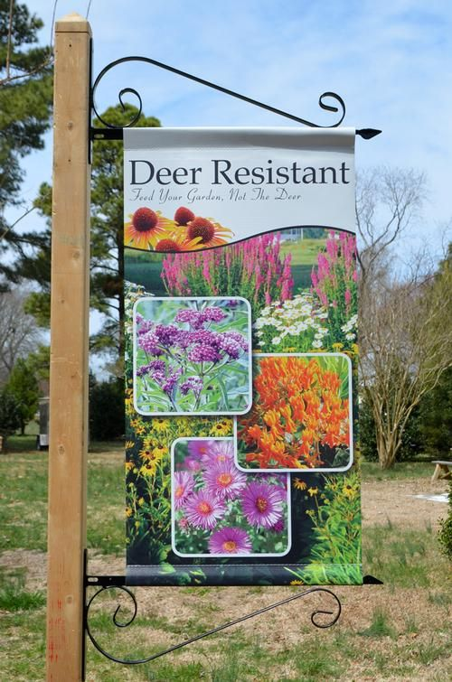 garden banners. Scroll Banner Bracket - Metalcraft Industries From Garden Center Marketing Banners T