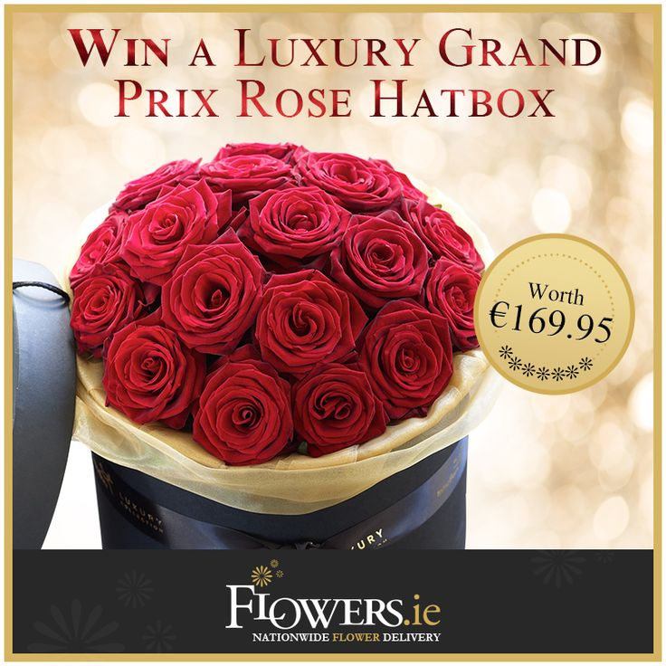 Win a Luxury Grand Prix Hatbox worth €169.95