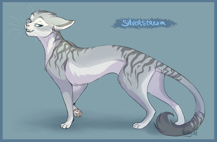 Warrior Cats - Silverstream by VanyCat on @DeviantArt