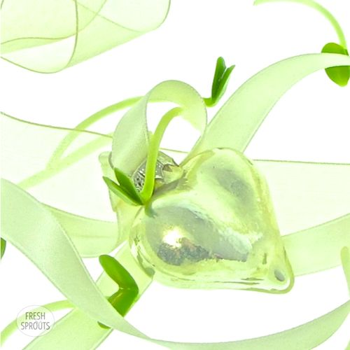 Sunflower sprouts with glass heart by FreshSprouts.dk