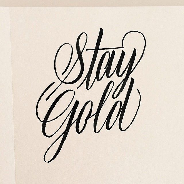 stay gold Stay gold by neon bunny, released 13 july 2016 1 romance in seoul 2 forest of skyscrapers 3 room314 featmark redito 4 all i want is you 5 it's you 6 ai 7.