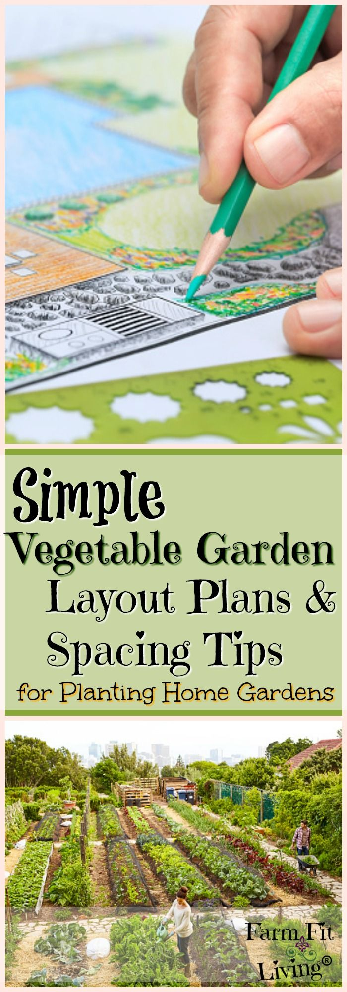 simple vegetable garden layout plans and spacing tips for home gardens - Home Vegetable Garden Design