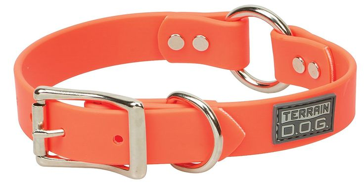 Terrain D.O.G. Brahma Webb Hunting Dog Collar, 1' by 21', Blaze Orange -- Click image for more details. (This is an affiliate link and I receive a commission for the sales)
