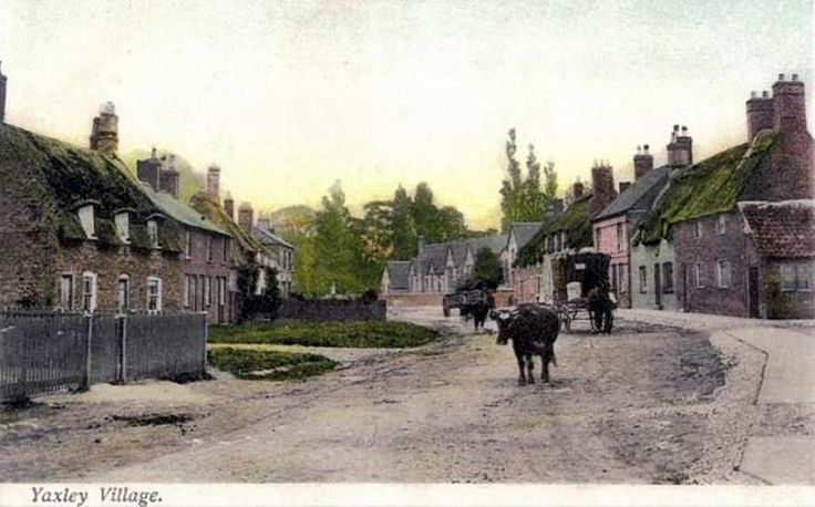 Horse drawn carrier's cart & open cart in Main Street, Yaxley | Animal transport, Domestic, Urban villages | Yaxley