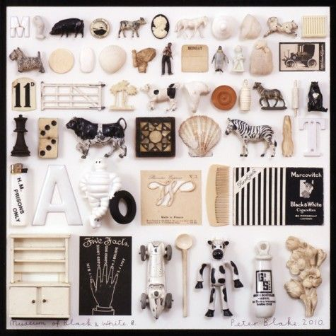 Peter Blake: Musuem of Black & White 8 (in homage to Mark Dion), 2010 - collage with found objects
