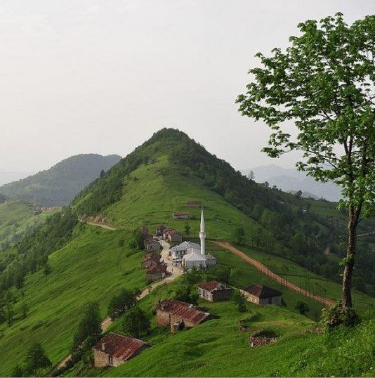 Kahvedüzü, Köprübaşı, Trabzon ⚓ Eastern Blacksea Region of Turkey #karadeniz…