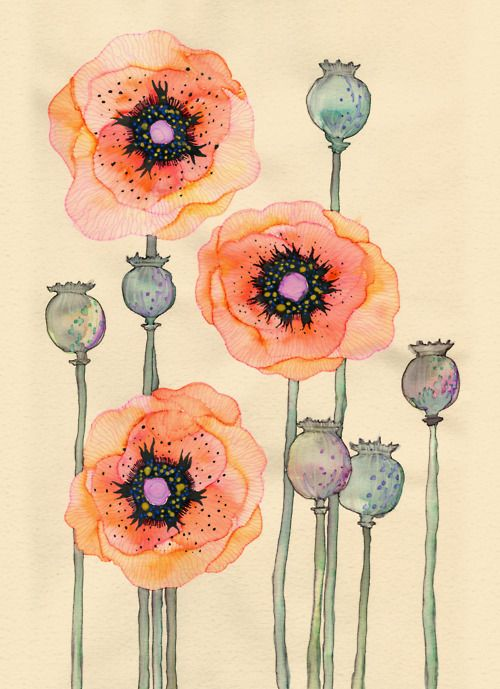 Oh I love these watercolour poppies! I would really like to draw poppies on my wall one day. Big! To the ceiling!