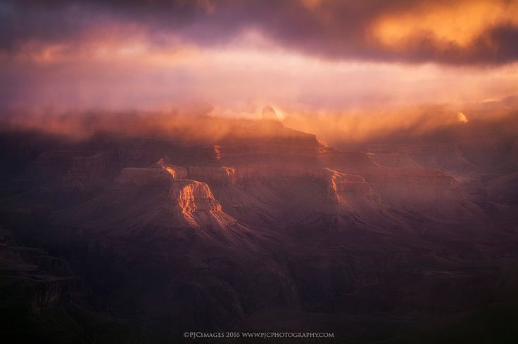 Metamorphosis by Peter Coskun Nature Photography #xemtvhay