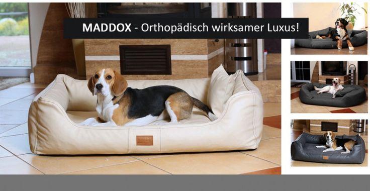 tierlando - Orthopädisches Hundebett MADDOX mit Visco-Matratze