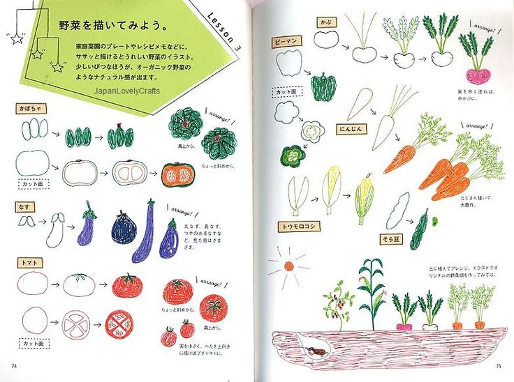 Illustration Book for a Ball-point pen - Japanese Drawing Book - 4 flowers - B851.