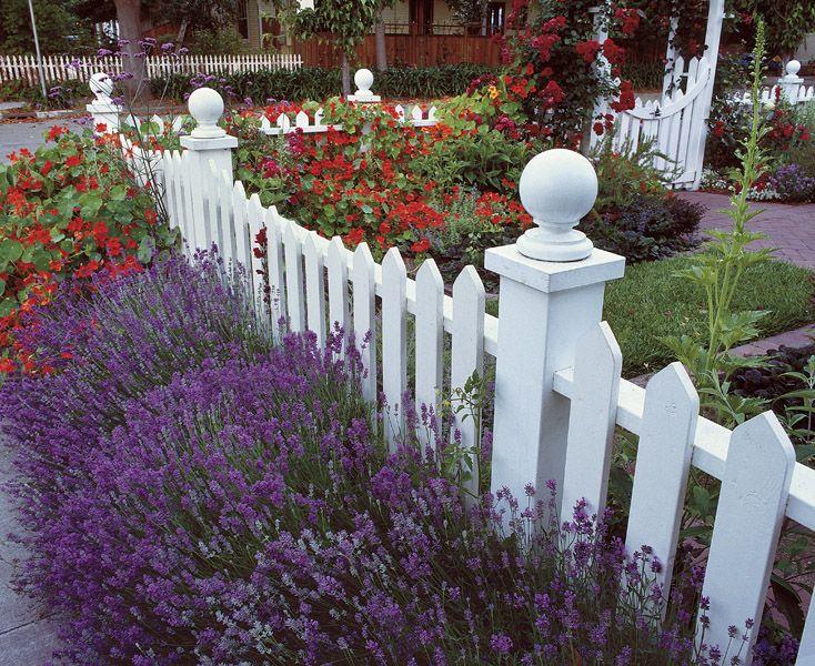 Best 25+ Cottage front yard ideas on Pinterest   Cottage ...