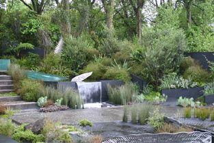 Xanthe white - new zealand Chelsea Garden
