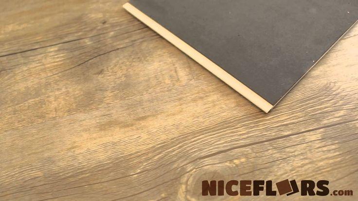 43 best syncorex vinyl floors images on pinterest vinyl for Dog proof wood floors