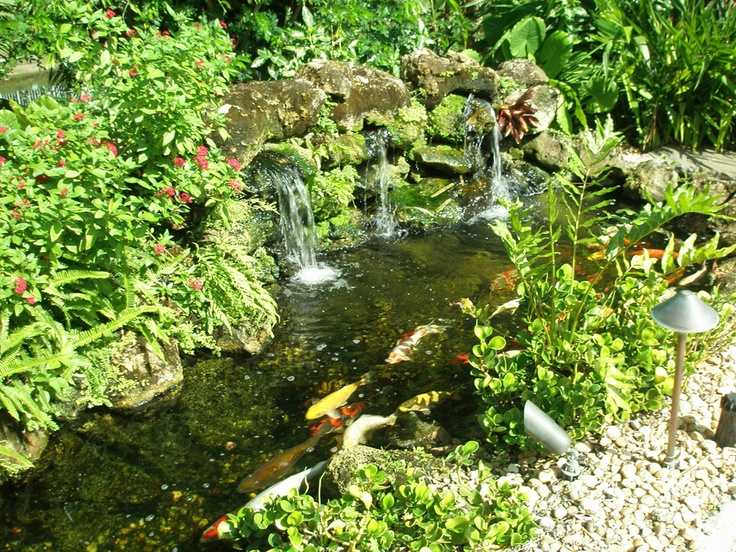 Koi pond stream w small waterfall ideas for home pinterest for Small pond waterfall