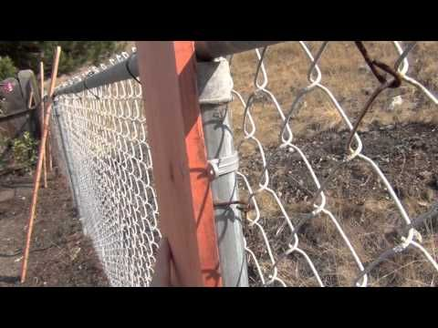 Home Improvement Tip! Fast and Affordable Fence Trick - Great if you want to spruce up the look of a chain link fence, easy & cheap.