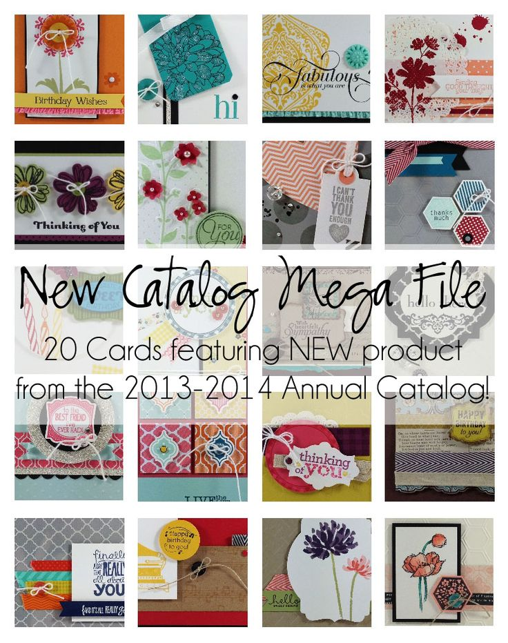 20 Cards featuring hot new product from the 2013-2014 Annual Catalog!