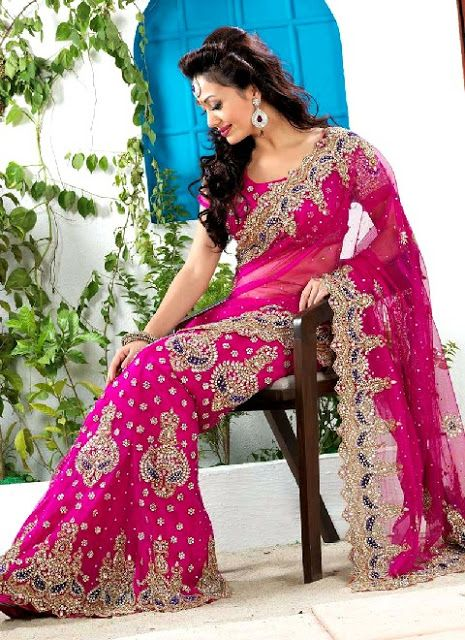 This is the image gallery of Bridal Sarees Collection 2014 For Wedding. You are currently viewing Magenta Net Bridal Saree In Pink Color. All other images from this gallery are given below. Give your comments in comments section about this. Also share stylehoster.com with your friends.  #bridalsaree ,#sareecollection2014, #weddingsaree, #indiansaree