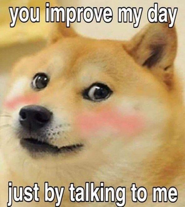 Pin On Funny Meme