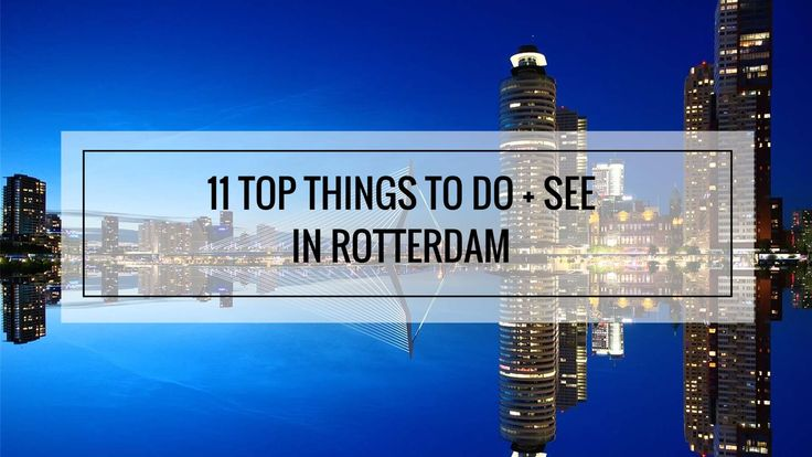 cool 11 Top Things to Do and See in Rotterdam