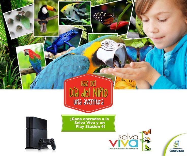 Concurso ConsorcioCL :Hazte fans de ConsorcioCL y participa por entradas para Selva Viva y un Play Station 4 http://bit.ly/1oJ5A2W