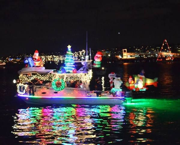 San Diego Bay Parade Of Lights Pleasing 50 Best San Diego Images On Pinterest  San Diego Craft Beer And Design Inspiration