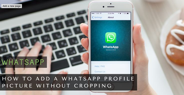 How to Add a WhatsApp Profile Picture Without Cropping [Android]