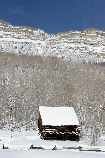 Mountain Cabin - Durango, Colorado