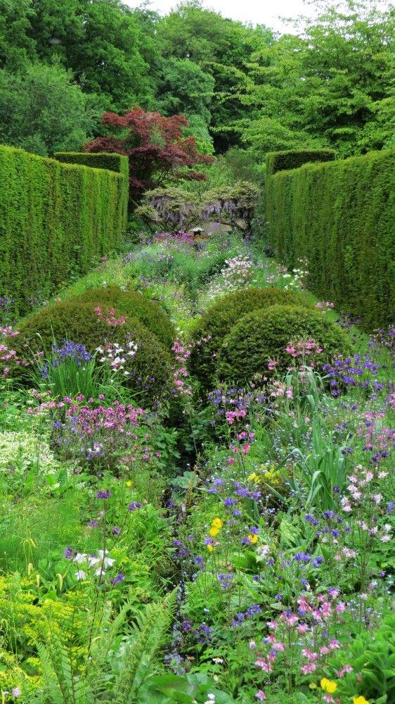carex garden design by carolyn mullet photo - Garden Design By Carolyn Mullet