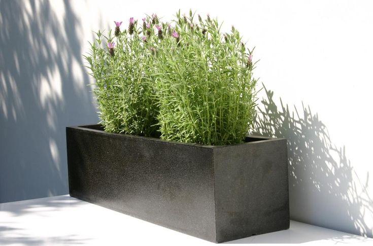 Planters / CAPI LUX donice do wnętrz i ogrodów