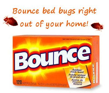 Home Remedies For Bed Bugs Dryer Sheets