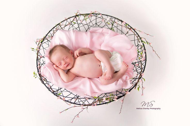 Colette - newborn photography