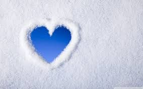 Image result for roses in snow