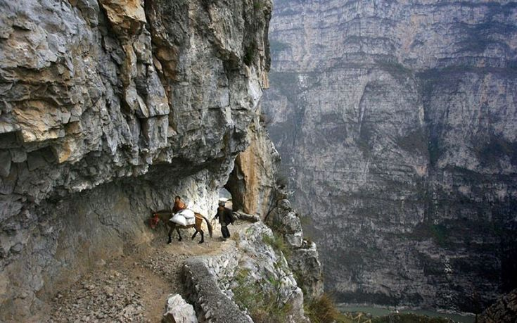 Cina, per raggiungere la scuola i ragazzi devono viaggiare per oltre cinque ore a dorso di mulo lungo un sentiero ricavato dalla roccia largo meno di un metro