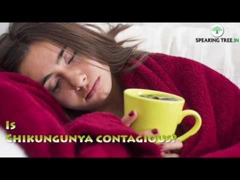 Chikungunya  Symptoms and Treatment,   چکن گونیہ کیا ہے اور اس کاعلاج