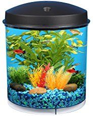 Ornamental and Tropical Fish | Aquarium Accessories - How Can We Help You?