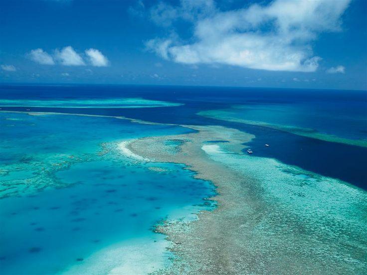 Great Barrier Reef near Hamilton Island