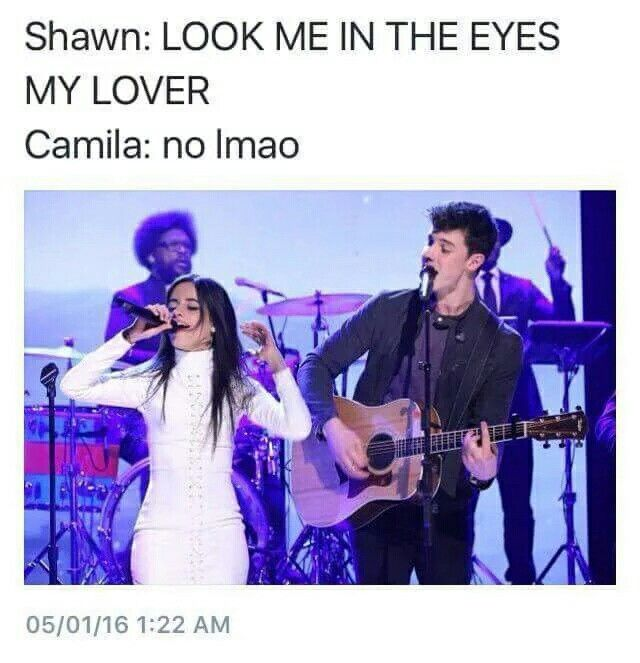 Shawn Mendes and Camila Cabello lol, I hate this but I love it at the same time