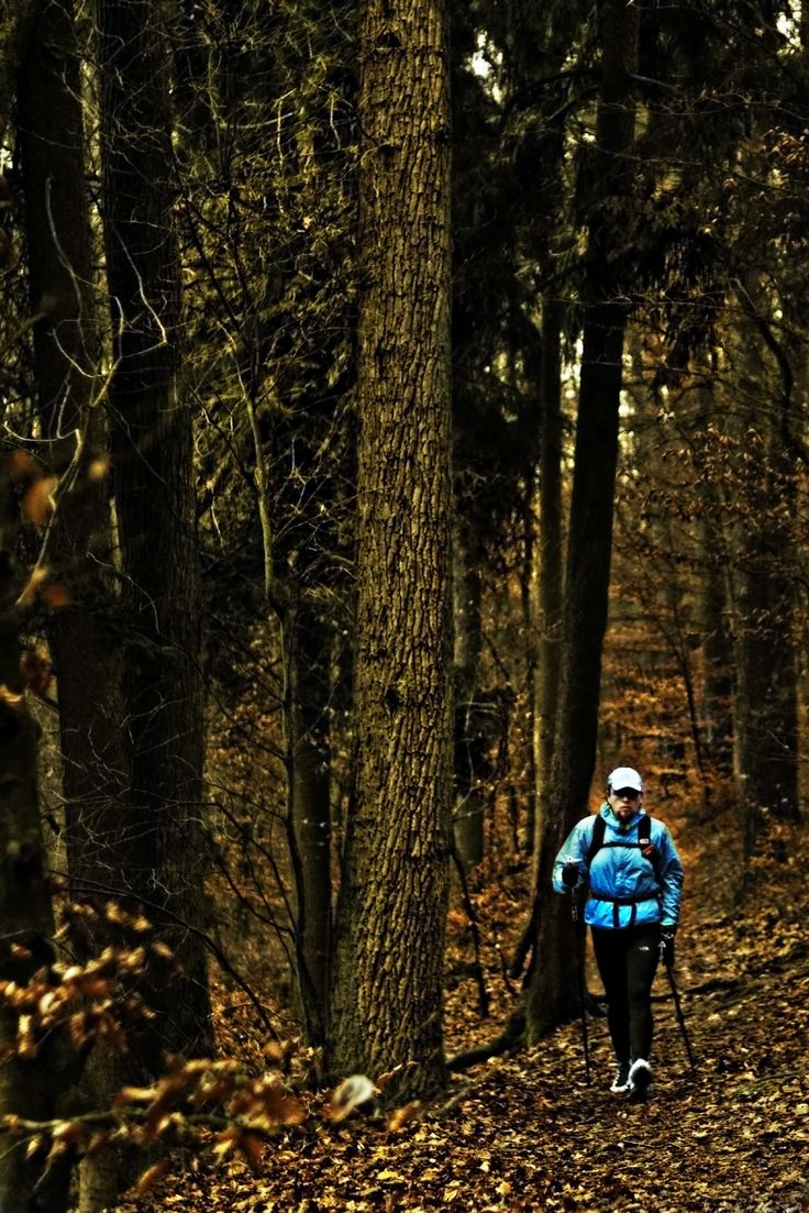 """Autumn walk"" ©2014 SnakeArtworX - Digital Art & Photography. #photography #sports #nordicwalking #polewalking #forest #500px"