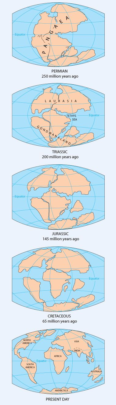 Watch interactive tectonic drift break up of Pangea - http://geology.com/pangea.htm