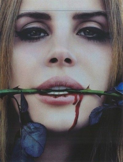 beauty, blood, flower, lana del rey, photo, rose