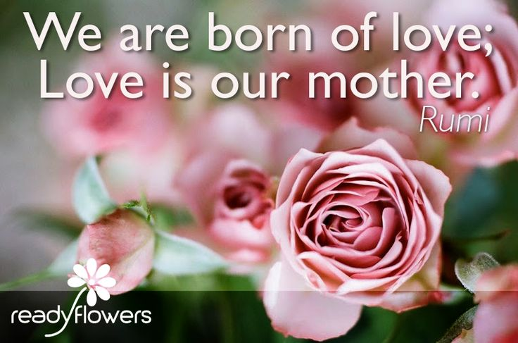 Appreciation for mothers, because love is our mother.