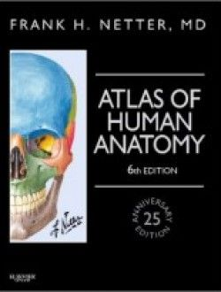 54 best anatomy books online images on pinterest books online atlas of human anatomy professional edition 6e free ebook online fandeluxe Gallery