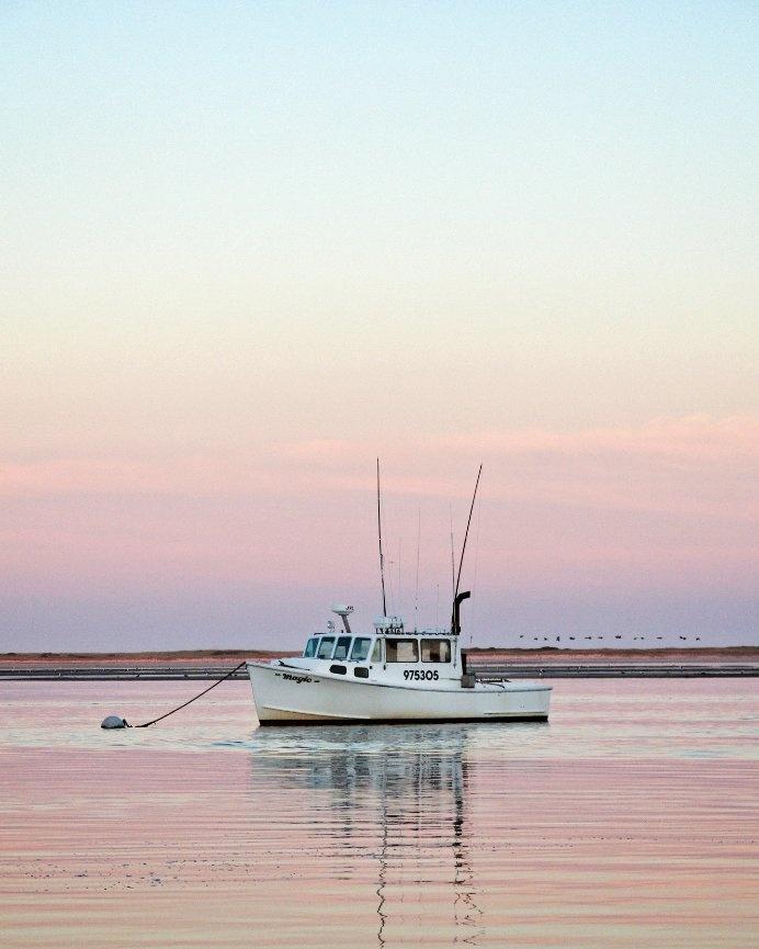 96 Best Chatham Cape Cod Images On Pinterest