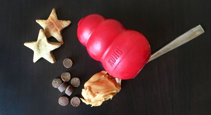 Looking for healthy and delicious treats to stuff your dog's KONG toy? Check out these 26 simple treat ideas. Plus, get KONG recipes your pooch will love!