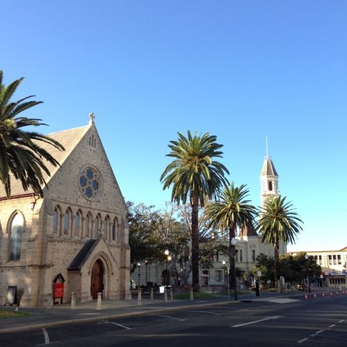 Fremantle Town Hall and church with palm trees.