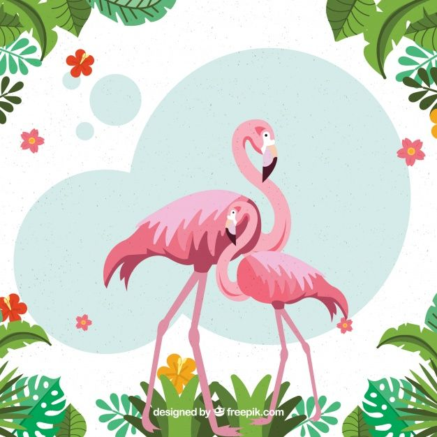 39c4b06ee Tropical background with birds and plants Free Vector | фламинго en ...