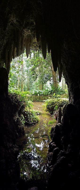 Caverna - Parque Lage - Buraco - Natureza - Verde - Rio de Janeiro - Brasil