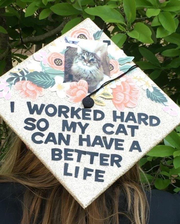 Pin by lindsay mikita on mba diy graduation cap