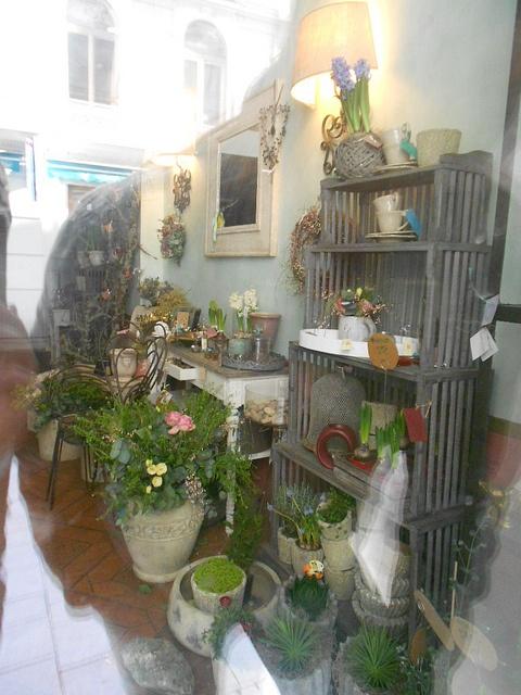 dreamy shop in Brno